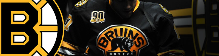 Boston Bruins Upcoming Season odds