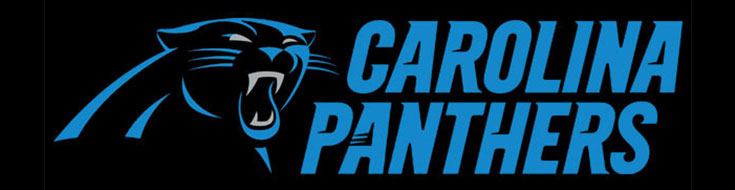 Carolina Panthers Betting Analysis and Odds