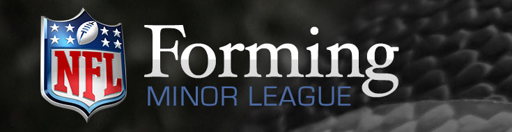 NFL forming Minor League