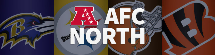 NFL AFC North Online Betting News