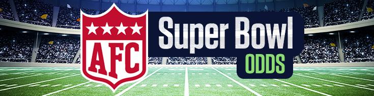 AFC in the Super Bowl