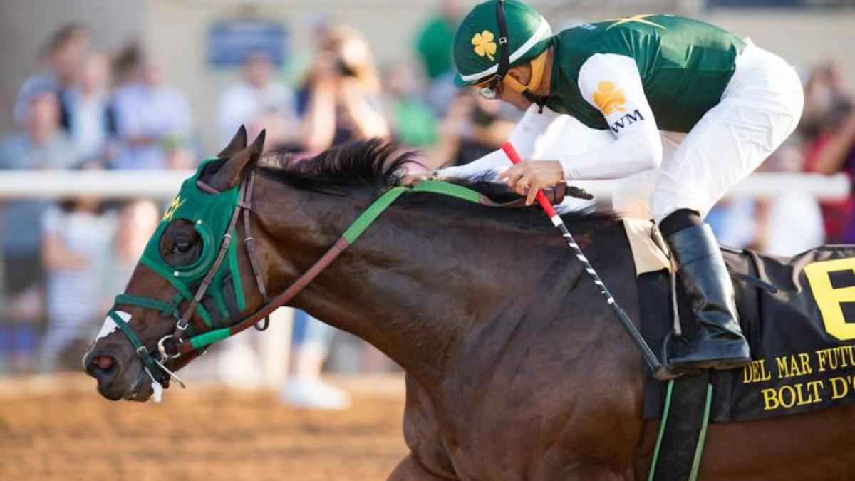 Bolt D'Oro - Great Option for Kentucky Derby Future Bets