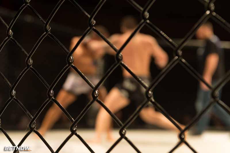 UFC Odds
