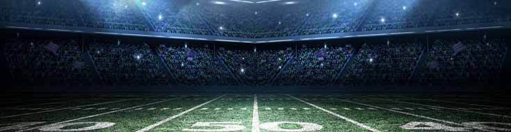 Bet NFL Games on the Internet