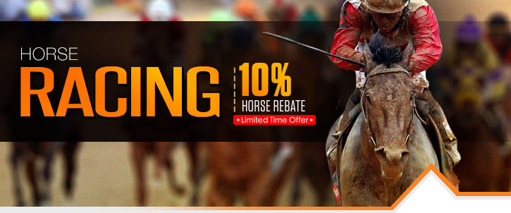 Whoa horse online betting ats betting definitions